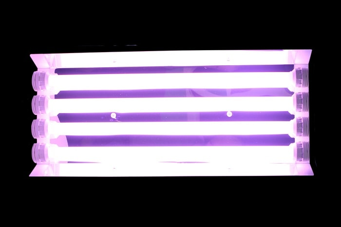 CCFL grow lights
