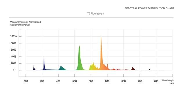 CCFL spectrum