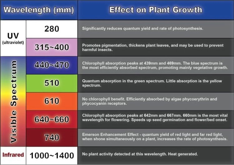 Best Led Grow Lights For Horticulture Genesis Scientific