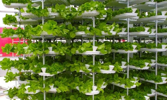led vertical farming