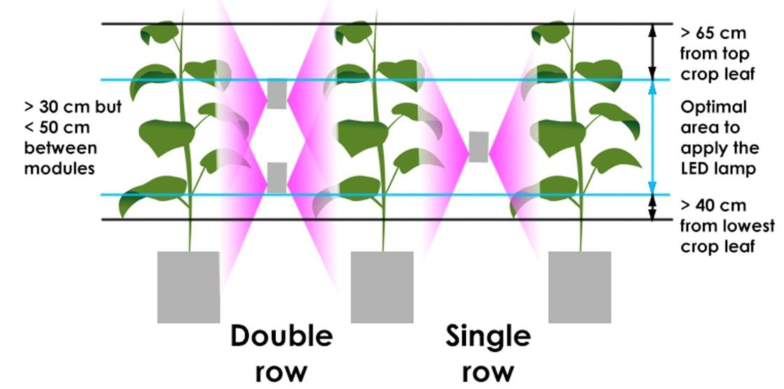 application flexible led grow light
